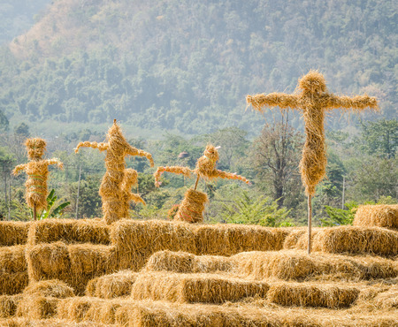 Group of scarecrows stand together in the garden Stock Photo - 25793530