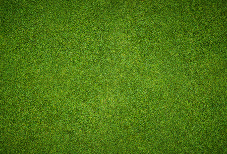 배경 및 골프 코스에서 아름 다운 녹색 잔디 패턴의 질감