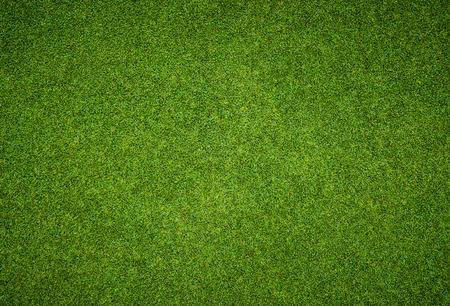 terreno: Sfondo e la trama di Bella erba verde modello da campo da golf