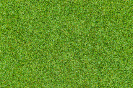 Background and texture of Beautiful green grass pattern from golf course photo