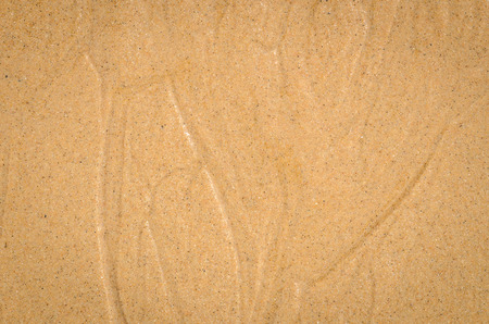 watercourse: close up nature background of Watercourse wet sand pattern of a beach in the summer