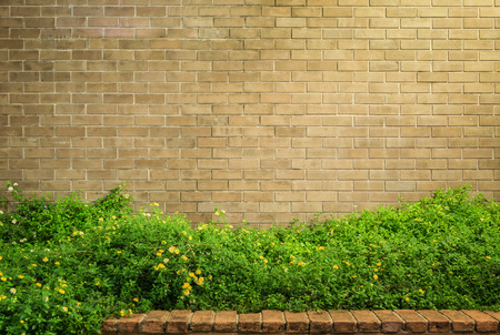 background and texture of vintage style decorative brown brick wall with Lantana camara or Cloth of gold 写真素材