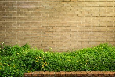 paredes de ladrillos: fondo y la textura de estilo vintage decorativo de pared de ladrillo marrón con Lantana camara o paño de oro