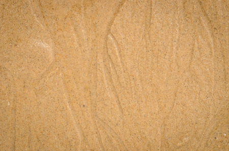 nature pattern: close up nature background of Watercourse wet sand pattern of a beach in the summer