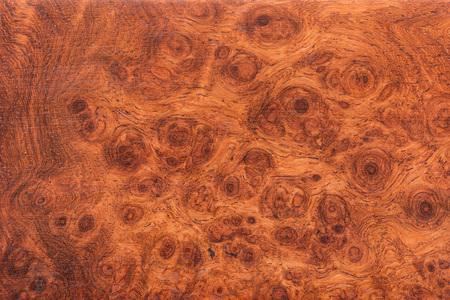 madera: Macro Ormosia textura de madera, afzelia xylocarpa (Kurz) Craib, LEGUMINOSAE-CAESALPINIOIDEAE (Fabaceae) Foto de archivo