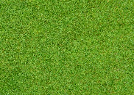 Hermosa modelo de la hierba verde del campo de Golf Foto de archivo - 52325357