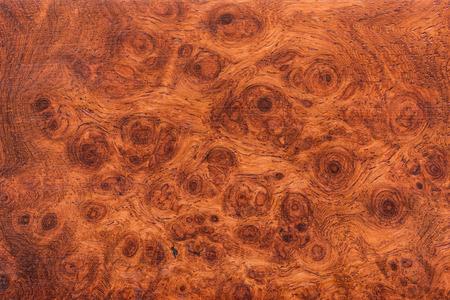 Macro Ormosia Holz Textur, Afzelia xylocarpa (Kurz) Craib, LEGUMINOSAE-Caesalpinioideae (FABACEAE) Standard-Bild
