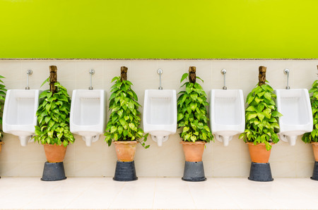 urinal: The modern style decorative restroom interior design with white urinal row and green ornamental plants Stock Photo