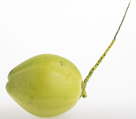 close up green Thai young coconut fruit on white background, Cocos nucifera L. Stock Photo