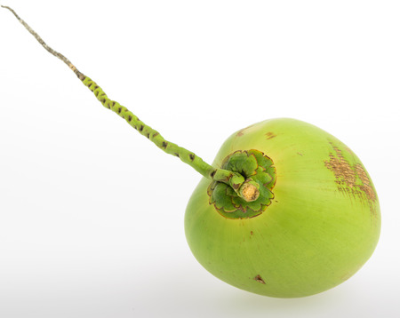 close up green Thai young coconut fruit on white background, Cocos nucifera L. Zdjęcie Seryjne