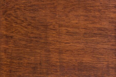 Macro Ormosia wood texture, Afzelia xylocarpa (Kurz) Craib, LEGUMINOSAE-CAESALPINIOIDEAE (FABACEAE) Stockfoto