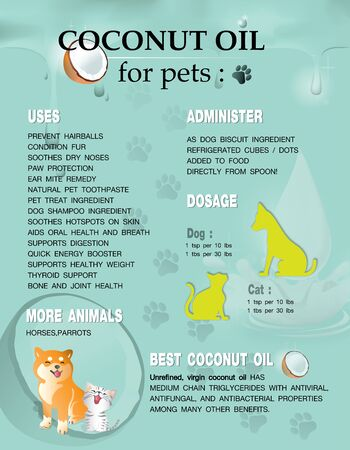 coconut oil for pets,vector infographic poster on green background. Illustration