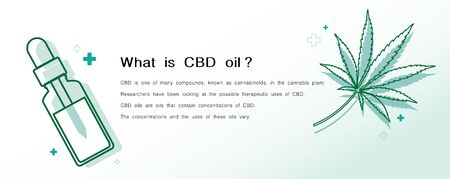 what is CBD oil benefits,Medical uses for bcd oil and cannabis,vector infographic on white background. Ilustración de vector