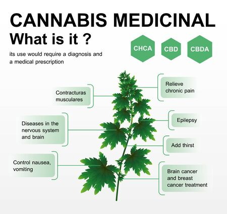 cannabis medicinal what is it,vector infographic on white background. Illusztráció