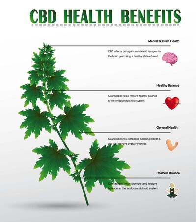 cbd oil health medical benefits in human icon infographic