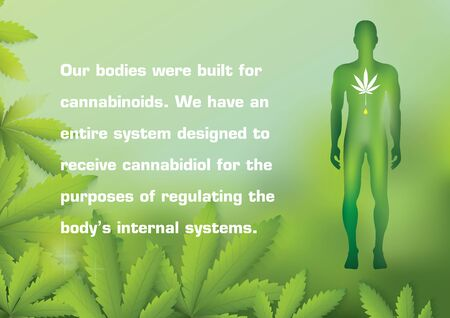 Our bodies were built for cannabinoids. We have an entire system designed to receive cannabidiol for the purposes of regulating the body's internal systems.