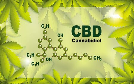 chemical formula medical of Marijuana and cannabis CBD oil nature background