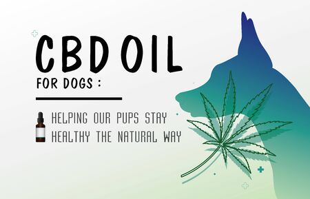 cbd oil for dog for dog helping our pups stay healthy the natural way