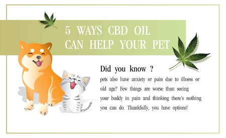 5 WAYS CBD OIL CAN HELP YOUR PET,pets also have anxiety or pain due to illness or old age?,vector infographic on white background and poster.