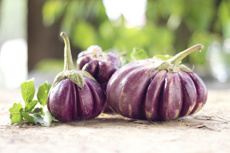 Eggplants. Stock Photo