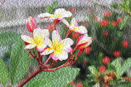 Oil paintings Plumeria