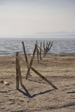 Rotting posts on the shore of the Salton Sea