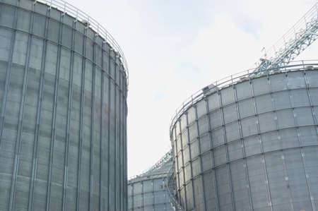 Factory of Animal food production