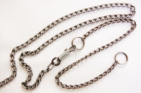 The chain for dog training Stock Photo - 18380814