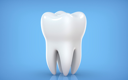 Dental model of premolar tooth, 3d rendering on blue backgroun. 3d illustration as a concept of dental examination teeth, dental health and hygiene
