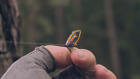 Fly bait for salmon
