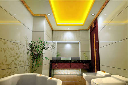 modern design interior of stylish bathroom  3D render photo