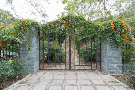 wrought iron gate, a beautiful green garden