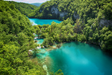 The beautiful view na the turquoise clear water of Plitvice lake. In this water live a any species of fish and birds. Over the water is a wooden footbridge for people to walk around. Imagens - 115678675