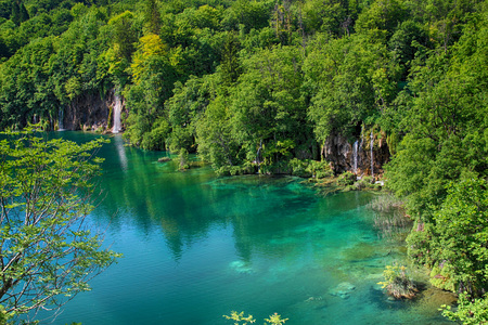 The beautiful view na the turquoise clear water of Plitvice lake. In this water live a any species of fish and birds. Over the water is a wooden footbridge for people to walk around. Imagens