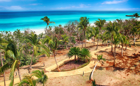 Varadero beach with tyrquis sea and ocean. There is a lot of green palms. Blue sky is in the background. It is beautiful natural bachground. There is summer time.