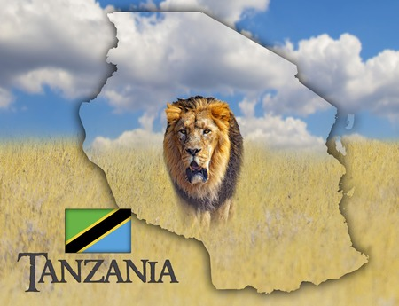 Flag Map of Tanzania on which is a picture of a lion. There is the text of Tanzania and flag. It is national african background with golden grass and blue sky.