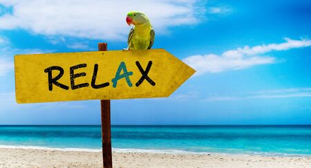 Wooden sign on beautiful beach and clear sea wit text relax. A green parrot sits on a pointer to a tropical paradise. There is summer time.
