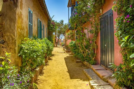 Street on Gorée island, Senegal, Africa. They are colorful stone houses overgrown with many green flowers. It is one of the earliest European settlements in Western Africa, Dakar