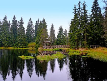 Wooden bridge and gazebo under the moss in national reservation Kladska near Horni slavkov. it is situated in Cezch republic. It is beautiful nature.
