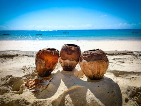 Three coconuts in the sand on a beach in Kenya, Africa. In the background is the Indian Ocean. Its a tropical paradise.