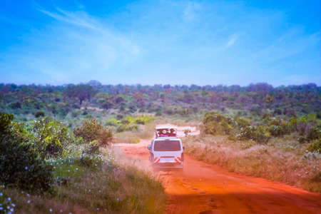 The car is driving on a dirt road in Tsavo National Park East Kenya. People are on a safari trip in nature. It is a beautiful day.