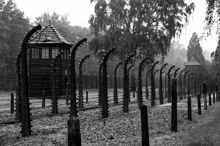 A view of an area used for executing prisoners of Auschwitz Concentration Camp. Extermination camp, Auschwitz Birkenau