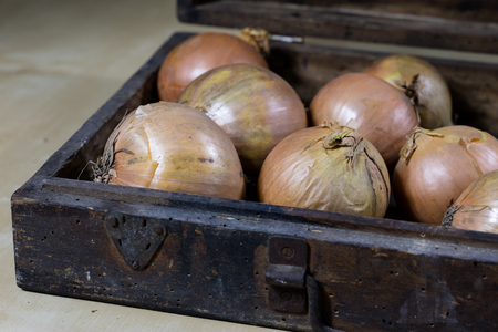 Onion the best specific  for influenza. Syrup prepared from onions. Black background. 版權商用圖片