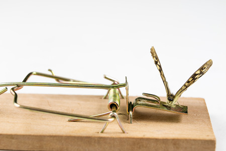 A mousetrap and a butterfly sitting on it. Insect trap for metaphors. White background. Stock Photo