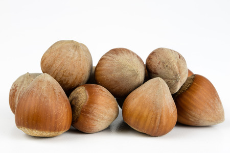 Hazelnuts in shell on a kitchen table. Hazel fruit as an addition to kitchen dishes. White background.