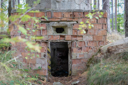 Old nuclear bunkers in Central Europe. Atomic shelters hidden deep in the forest. Season of the autumn.
