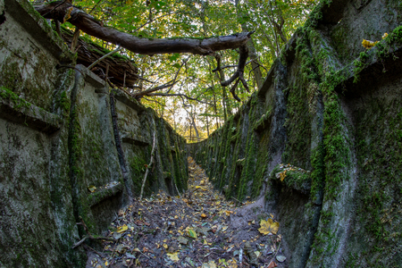 Ruined trenches in central europe. Old reinforced concrete German fortifications. Season of the autumn
