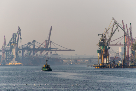 Port cranes in the port of Central Europe. Cranes for unloading goods and containers. Season of the autumn.