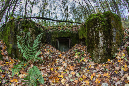 Demolished bunker in Central Europe. Old reinforced concrete fortifications of the Pomeranian embankment. Season of the autumn.