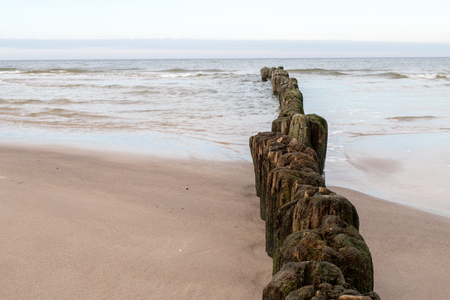 Old breakwater bollards on the sea beach. Coast in central europe. Season of the autumn.